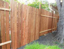 Burdick's backyard fence